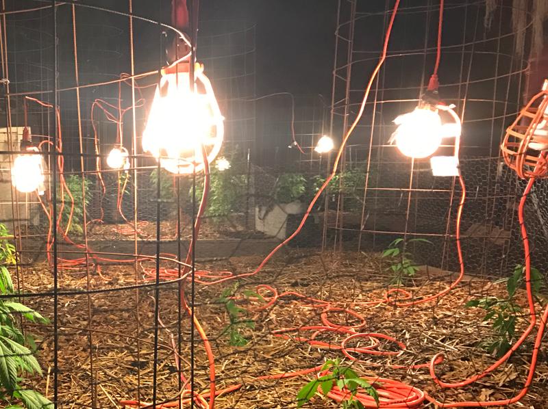 gas lantern routine 800x598
