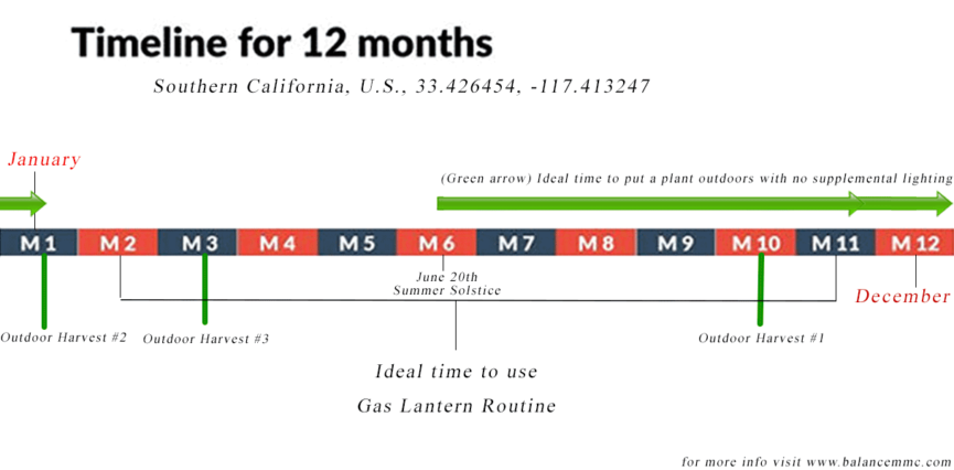 Best Time to Plant Clones Outdoor in California - Monthly Breakdown